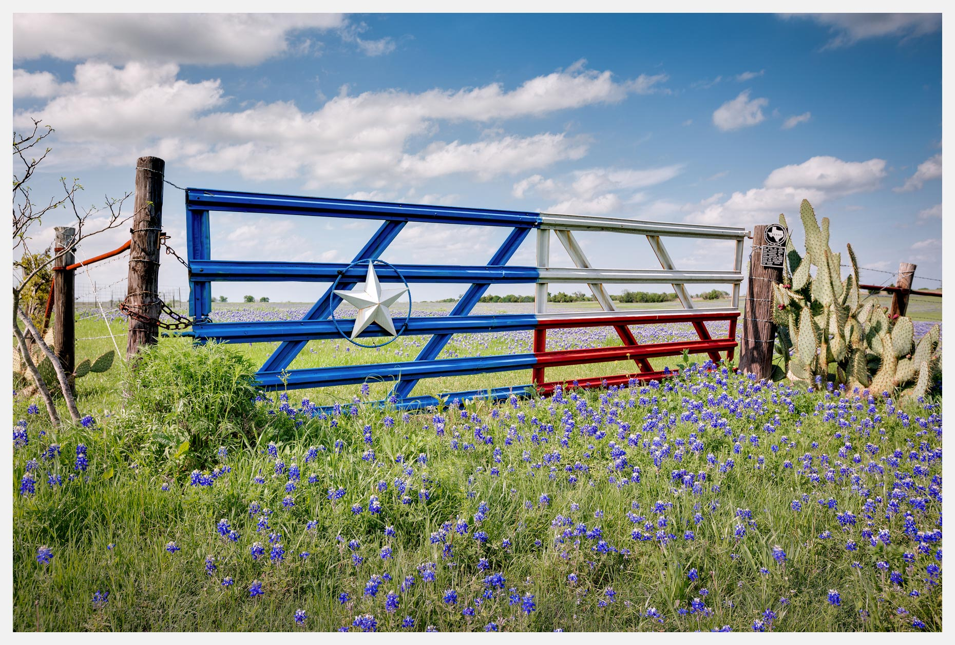 Lone-Star-Gate-With-Bluebonnets